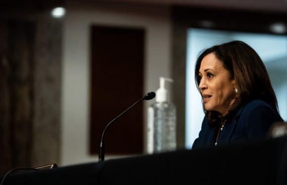 Kamala Harris: Reproductive Injustice Has Helped Spread Coronavirus