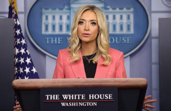 Press Secretary Kayleigh McEnany Says Voter Fraud Suits Will 'Probably Make Its Way Up to the Supreme Court'